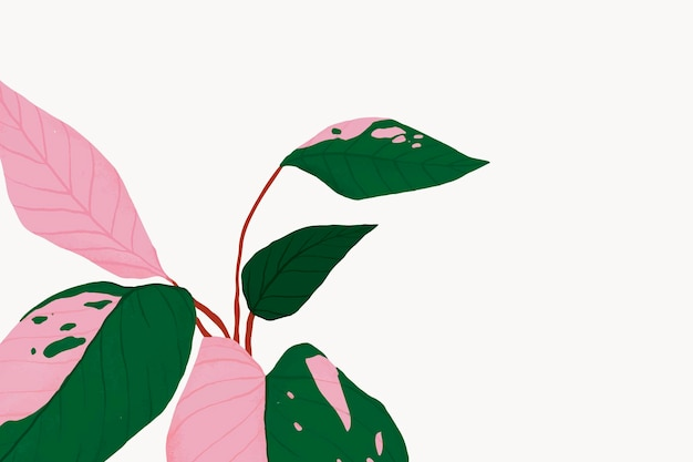 Illustration botanique de vecteur de fond de plante d'intérieur