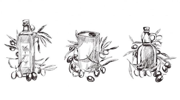 Illustration de branches d'olive style rétro dessinées à la main