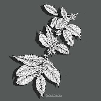 Illustration de café de branche avec style de gravure