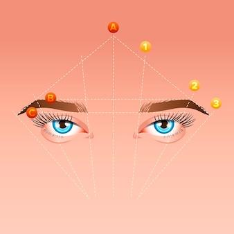 Illustration de la cartographie des sourcils en dégradé