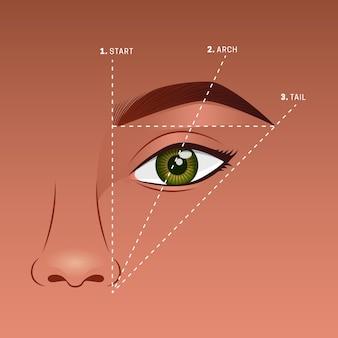 Illustration de la cartographie des sourcils dégradés