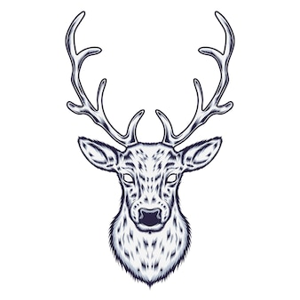 Illustration de cerf