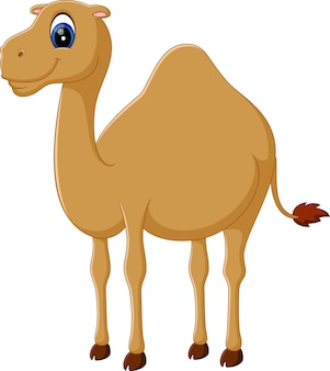 Illustration de chameau drôle mignon