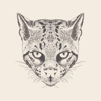 Illustration de chat de dessin dessiné à la main.