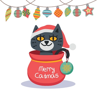 Illustration d'un chat de noël avec des ornements de fond