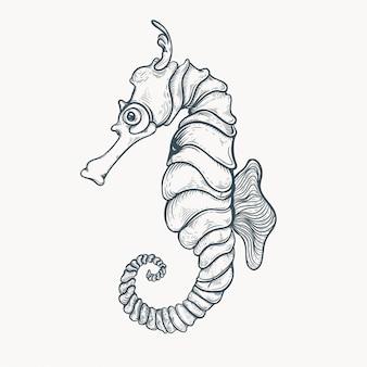 Illustration de cheval de mer dessiné à la main