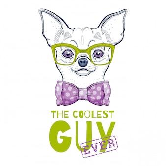 Illustration de chien chihuahua mignon