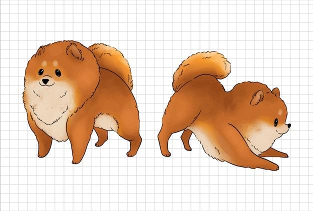 Illustration de chien de poméranie. illustration vectorielle de chien mignon.