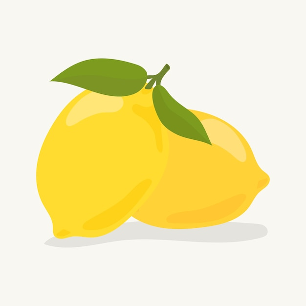 Illustration de citron coloré dessiné à la main