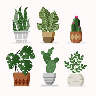 Illustration de la collection de plantes d'intérieur