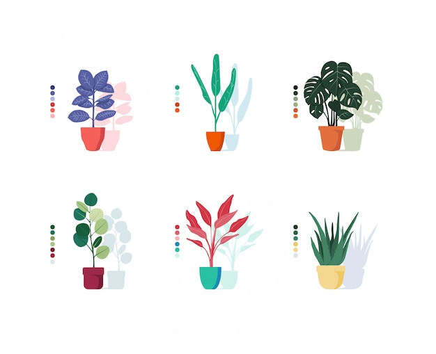 Illustration colorée de plantes en pot
