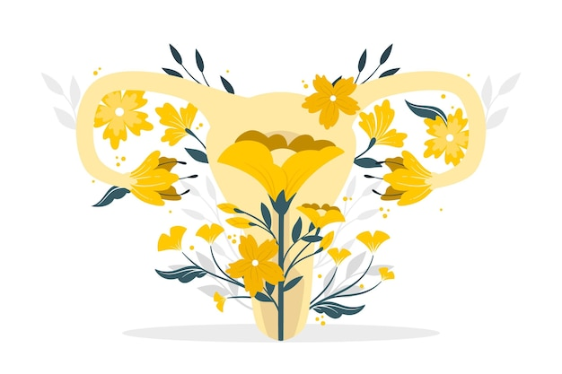 Illustration de concept de système reproducteur féminin
