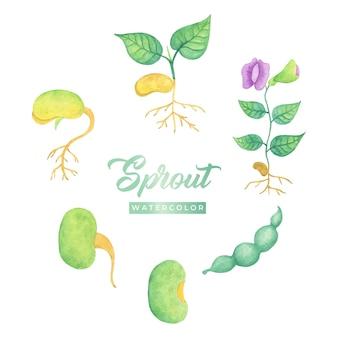 Illustration de conception aquarelle sprout