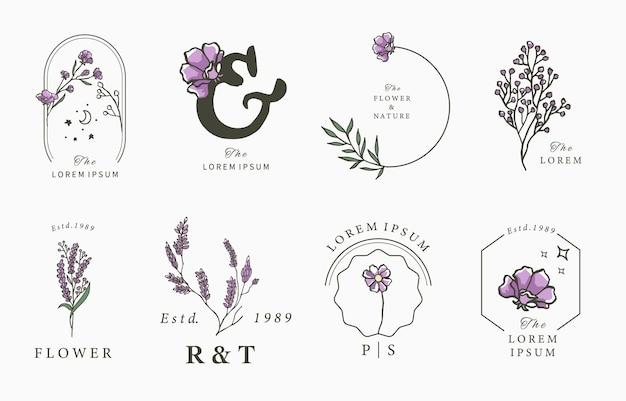 Illustration de conception de collection de lavande de beauté