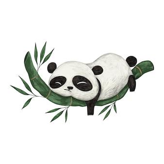 Illustration de couleur crayon mignon panda