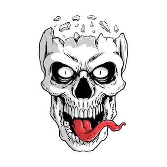 Illustration de crâne blanc