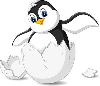Dessin anime manchot vecteurs et photos gratuites - Dessin anime les pingouins ...