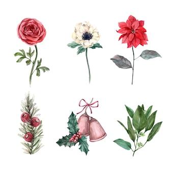 Illustration de décoration hiver aquarelle sur blanc, composé de diverses fleurs.