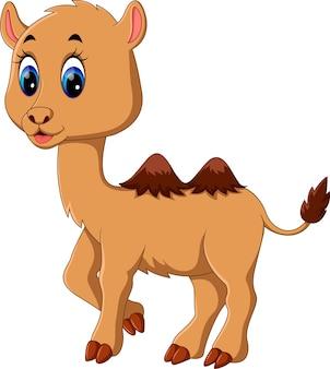 Illustration de dessin animé mignon chameau
