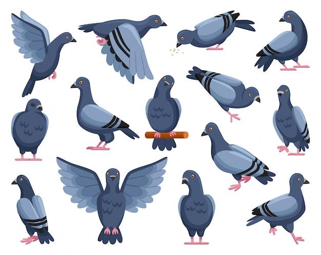 Illustration de dessin animé de pigeon de la paix