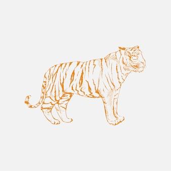 Illustration dessin de style de tigre