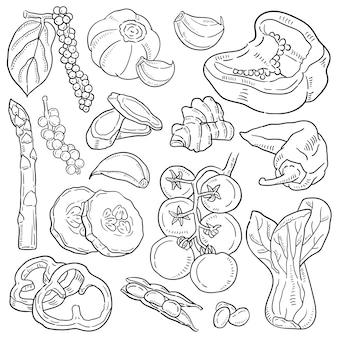 Illustration dessinée de légumes à la main.