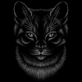 Illustration dessinée à la main dans le style de craie de chat