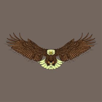Illustration dessinée à la main eagle