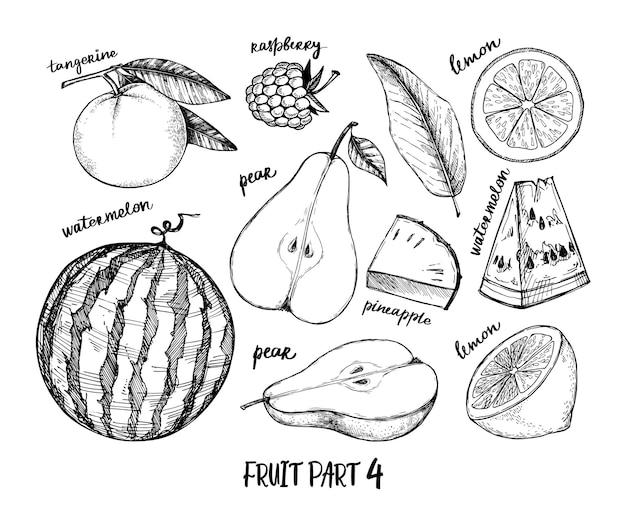 Illustration dessinée à la main - fruits tropicaux et exotiques. framboise, pastèque, poire