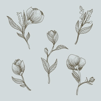 Illustration de dessinés à la main ornement floral