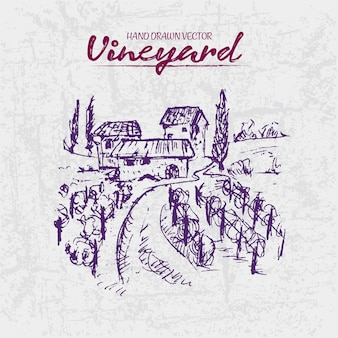 Illustration détaillée de dessinés à la main violet vignoble illustration