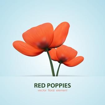 Illustration: deux pavot isolés. fleurs rouges