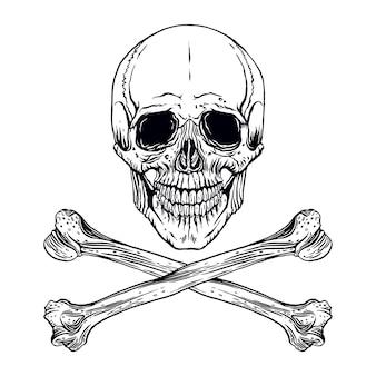 Illustration du crâne humain dessiné à la main avec des os croisés