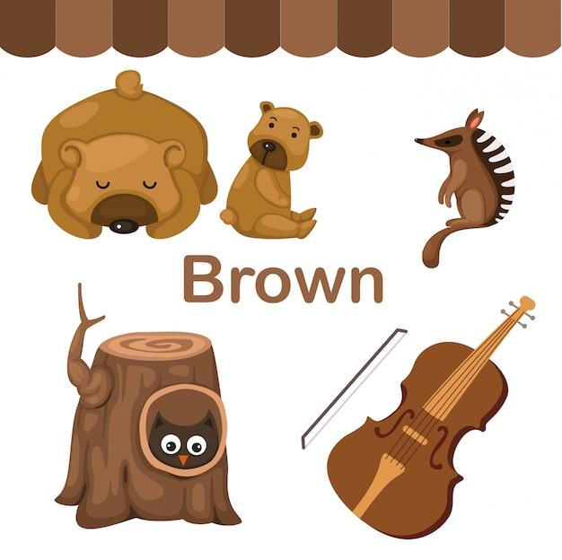 Illustration du groupe de couleur brun isolé