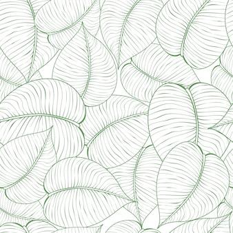 Illustration du modèle de feuille verte transparente. abstrait floral avec des feuilles, motif de style de ligne, design floral.