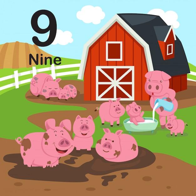 Illustration du numéro neuf, comptez les cochons.