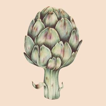 Illustration du style aquarelle de légume