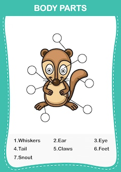 Illustration du vocabulaire xerus faisant partie du corps, écrivez le nombre correct de parties du corps.vector