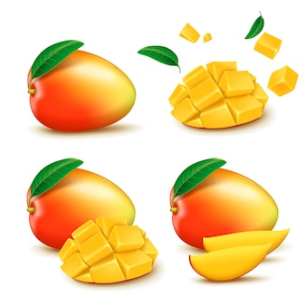 Illustration d'éléments de conception de mangue fraîche