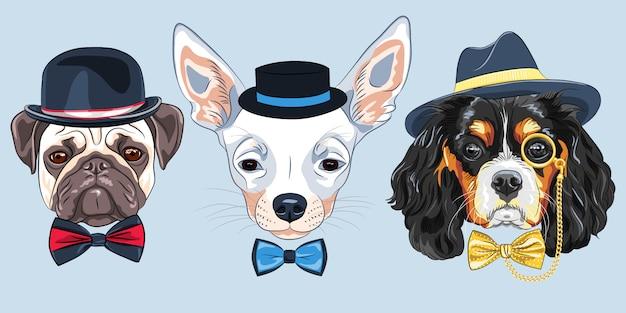 Illustration ensemble de chiens hipster de dessin animé