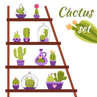 Illustration d'étagère de cactus