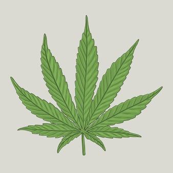 Illustration de feuille de chanvre vert dessinée à la main