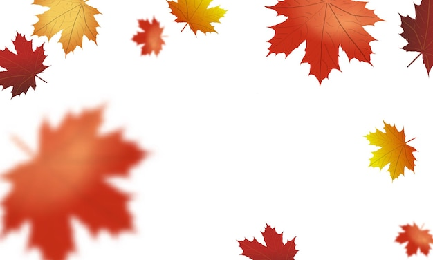 Illustration de feuilles tombantes d'automne