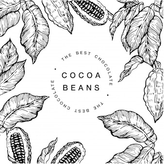 Illustration de fèves de cacao au chocolat