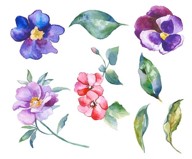 Illustration de fleurs aquarelle