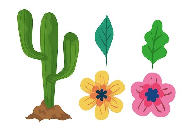 Illustration de fleurs et de feuilles de cactus isolés
