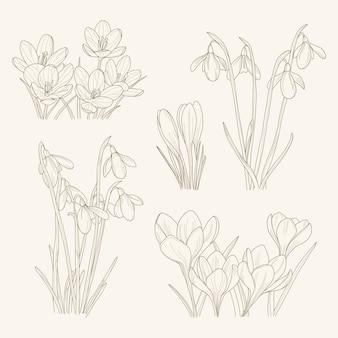 Illustration de fleurs de jardin dessinés à la main linéaire