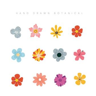 Illustration florale de fleur botanique de printemps dessiné à la main