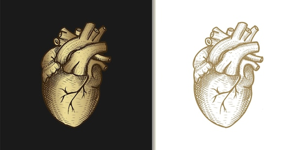 Illustration de gravure vintage coeur ou amour or