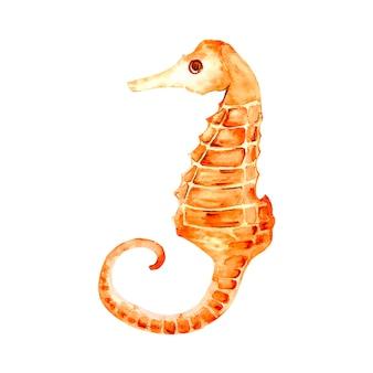 Illustration de l'hippocampe. thème de la mer.